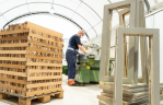 GP GROOT breidt faciliteiten opwerking herbruikbaar hout flink uit